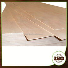Phenolic Floor Board Plywood