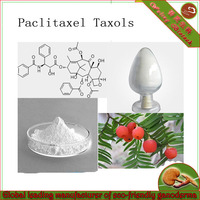 Paclitaxel/Taxol/chinese yew extract