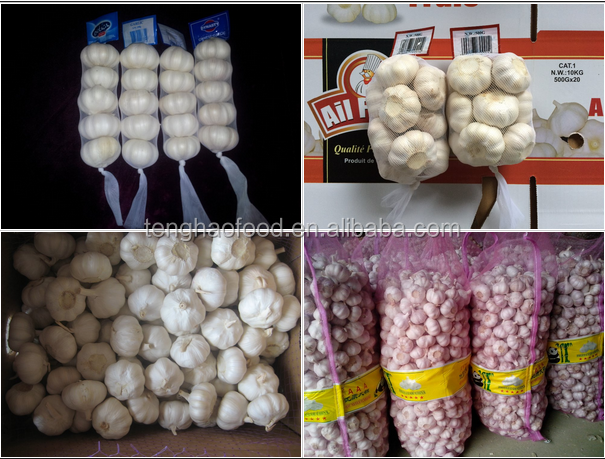 Best price and quality 2016 new crop of fresh Chinese garlic