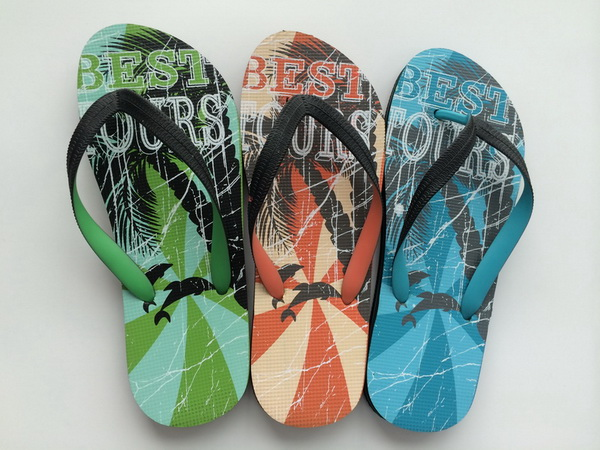 Animals and Trees Insole Print Men Flip Flop, Rubber Flip Flop, Flip Flop Slipper