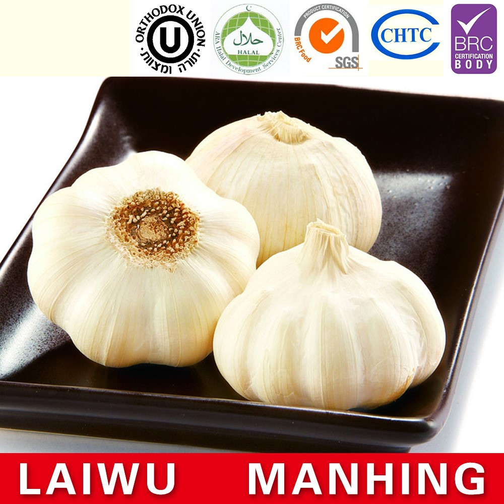 ISO 9001 fresh chinese natural white garlic