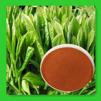 NATURALGREEN TEA POLYPHEOL 20%-98%