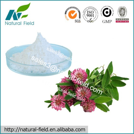 100% Natural Red Clover Extract Biochanin A 98% Manufacturer