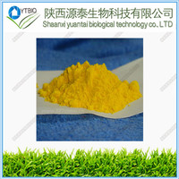 Best Factory Ubidecarenone Coenzyme Q10 (CoQ10) CAS No. 303-98-0 powder with lowest price