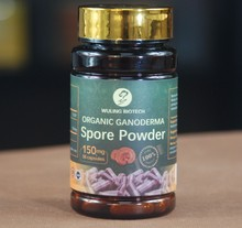 Herbal Supplement Ganoderma Lucidum Linzhi Red Reishi Mushroom Spore Powder Capsule