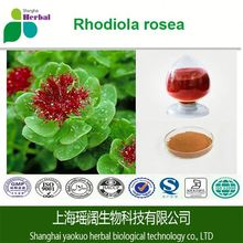 Herbal long time sex medicine ! Wholesale rhodiola rosea,rhodiola rosea powder extract with factory price and quality services !