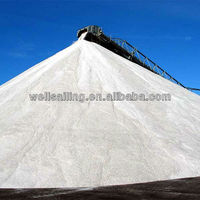 Prices of Salt Per Ton