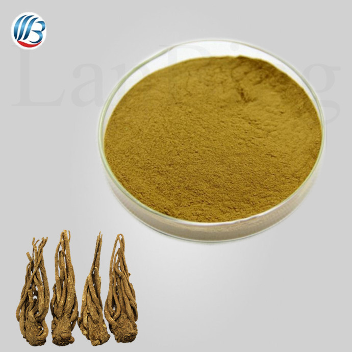 GMP standard top quality dong quai powder danggui extract angelica extract