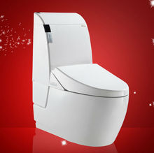 villeroy and boch toilet