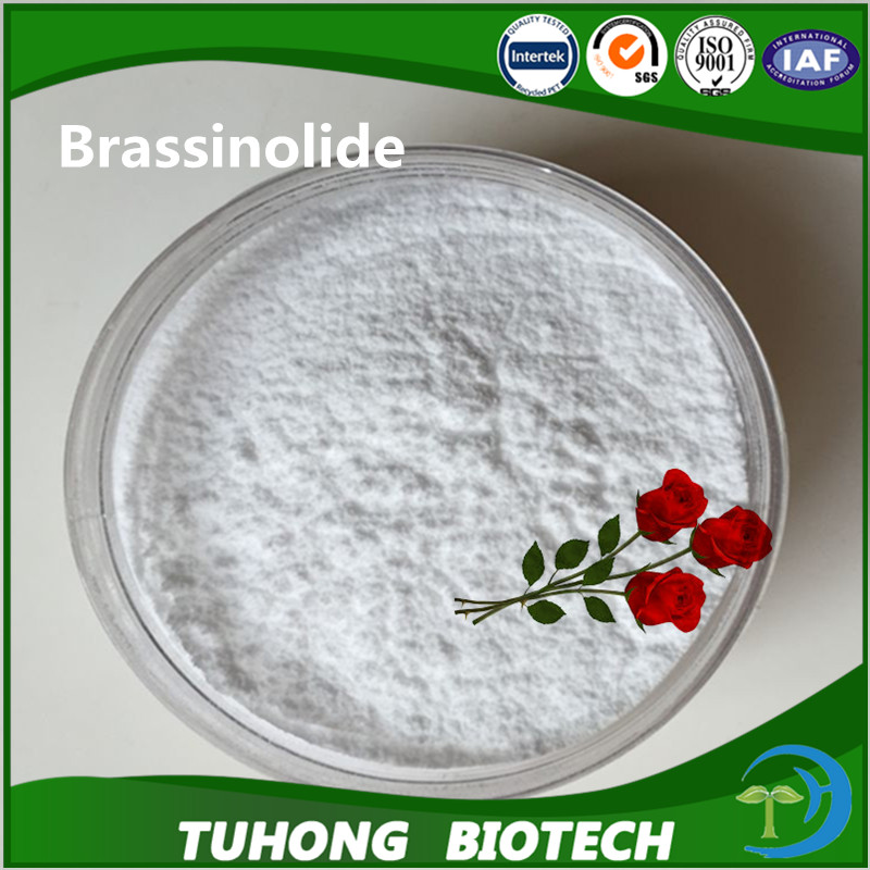 Rice yield enhancer brassinolide plant growth accelerator PRG to promote fruit's enlarging