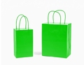 Custom Logo Cheap Green Print Paper Carry Shopping Bag With Different Handles