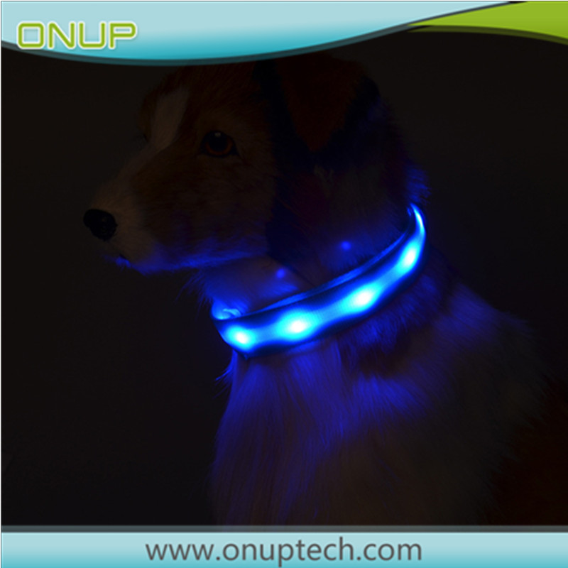 Brand new flashing dog collar gps collar dog with high quality