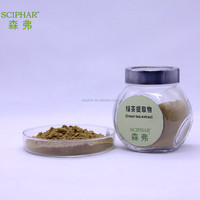 polyphenols EGCG Anti-aging Green Tea Extract powder