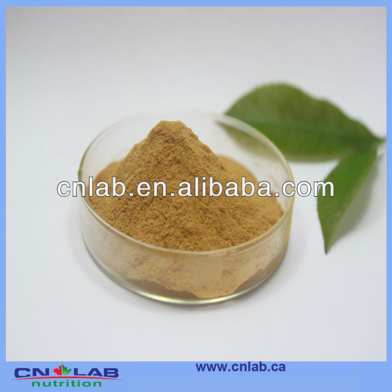 Natural Tribulus Terrestris Extract Powder High Quality