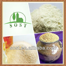 Wholesale Pure Extract Powder Natural Honey