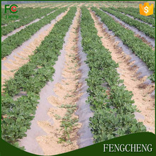 pe high quality plastic biodegradable agricultural mulch film LDPE &HDPE mulch film with competitive price