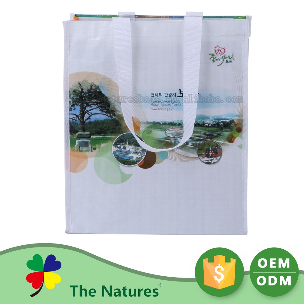 Advertising Promotion Low Cost Oem Production Shopping Foldable Non Woven Shopping Bag
