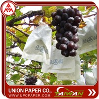 grape fruit packing paper bag fruit vegetable package