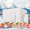 Frozen Meat And Fish Cold Room Panel Machine