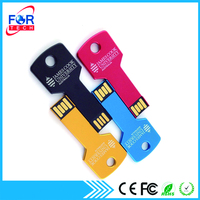 Chinese Factory Key Shape OEM USB Flash Drive 1GB Bulk for Company Gifts 128MB-64GB