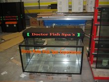 Garra Rufa Fish Spa's