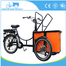 250W motor 36V10AH india mini cargo bike tricycle producer factory