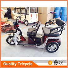 Small Recreational electric tricycle for the aged