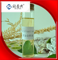 Reliable supplier best service black currant seed oil with free sample