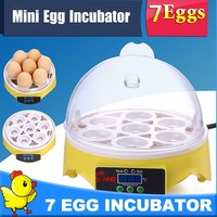 7 eggs HHD automatic chicken egg incubator for sale CE marked YZ9-7