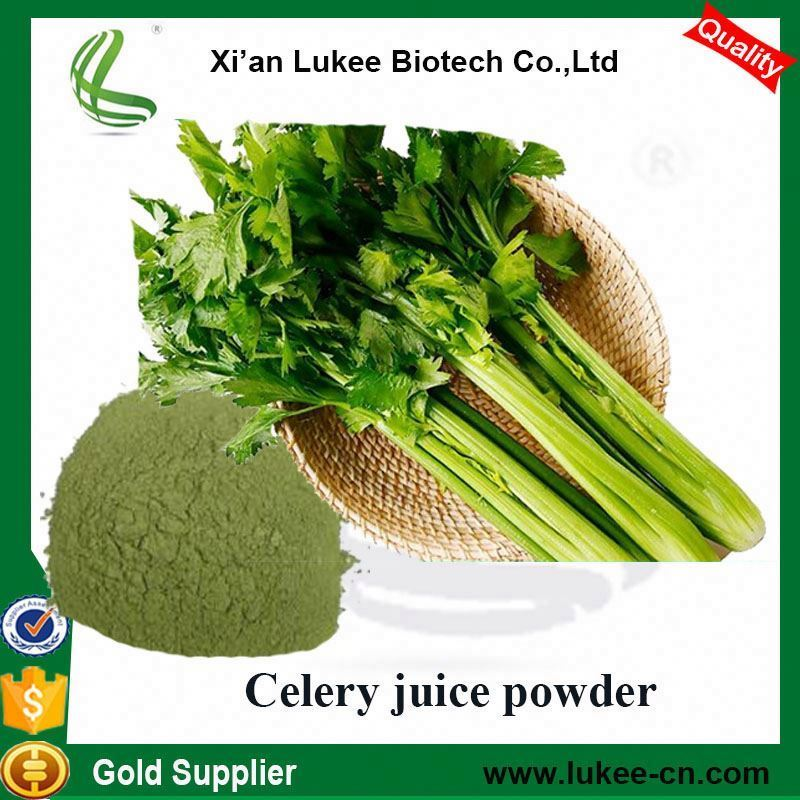 lower price celery extract powder 98% apigenin
