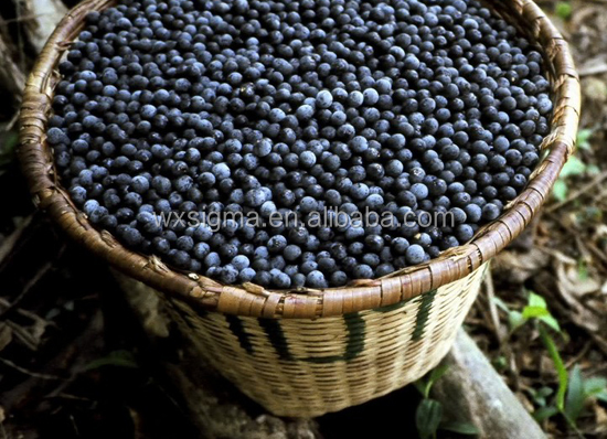 supply 100% natural extract acai berry