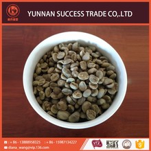 Hot new fast delivery arabica bulk green coffee bean