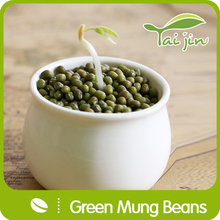 2015 New Crop Chinese Sprouting Quality Green Mung Beans