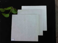Competitive price cellulose fiber cement board with SGS A1 fireproof