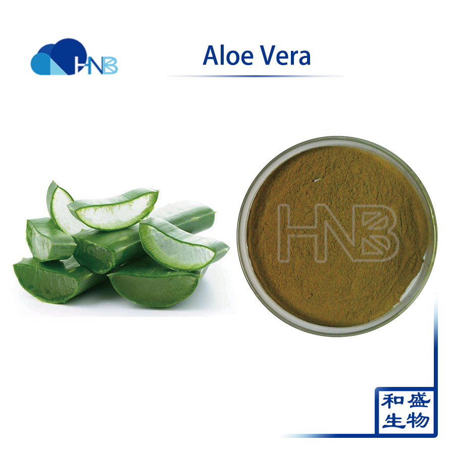 100% natural high quality Aloe Vera Extract for skin care skin protection