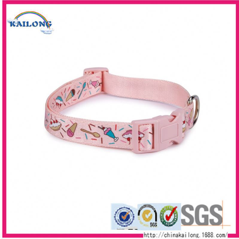 High Quality Leads Light-Up Harness Led Light Pet Collar & Leash