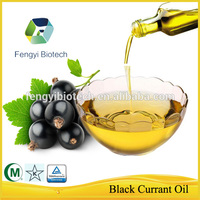 High Quality Black Currant Oil/Essential Oil Extraction/Vegetable Oil
