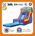 Feile--H200 inflatable water slides