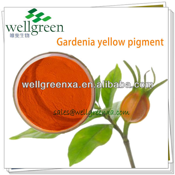 100% Natural Gardenia Extract Powder With Gardenia Yellow Pigment With Beyond 400 For Food Coloring
