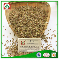Chinese lentils/green lentils/good quality cheap price lentils