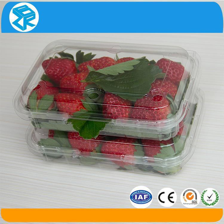 Wholesale clear plastic blueberry containers food containers