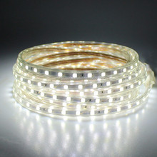 Rgb 220v Led Strip 5050 Flexible Waterproof Led Strip Light With 220 V Power Adapter(plug)