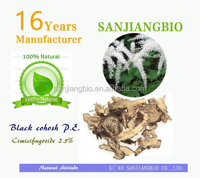 100% pure natural black cohosh powder 2.5% 5% 8% Triterpenoid Saponins
