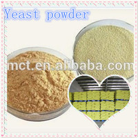Hot sale poultry feed Yeast Powder 60% powder with free sample