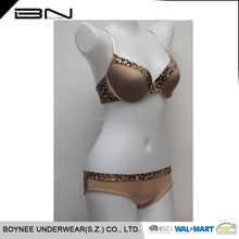 Professional Underwear Manufacture OEM Accept Girl's Underwear Women Uunderwear Sex Dress Bra Set