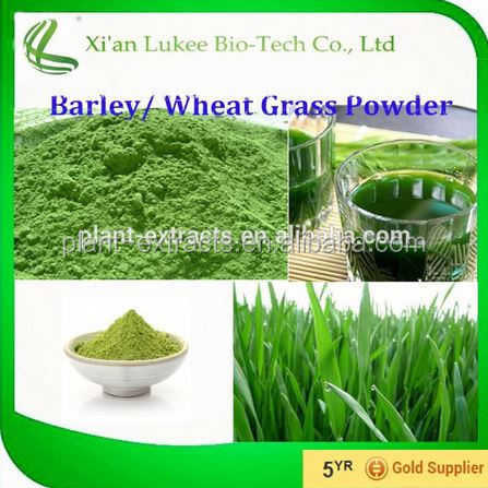 Organic barley grass , Organic Barley Grass Extract/grass jelly powder