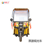 2 Seats Battery Powered Classic Electric Sightseeing car
