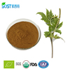 Herbal Black Cohosh Root Extract