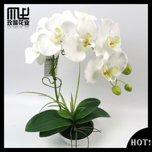 Real touch artificial flower orchid bonsai in white pot for home decoration