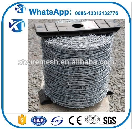 pvc coated / galvanized barded wire razor blade barbed wire with factory price